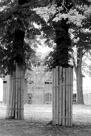 Bauvorhaben - Hort 81. Grundschule - Centro Umwelttechnik
